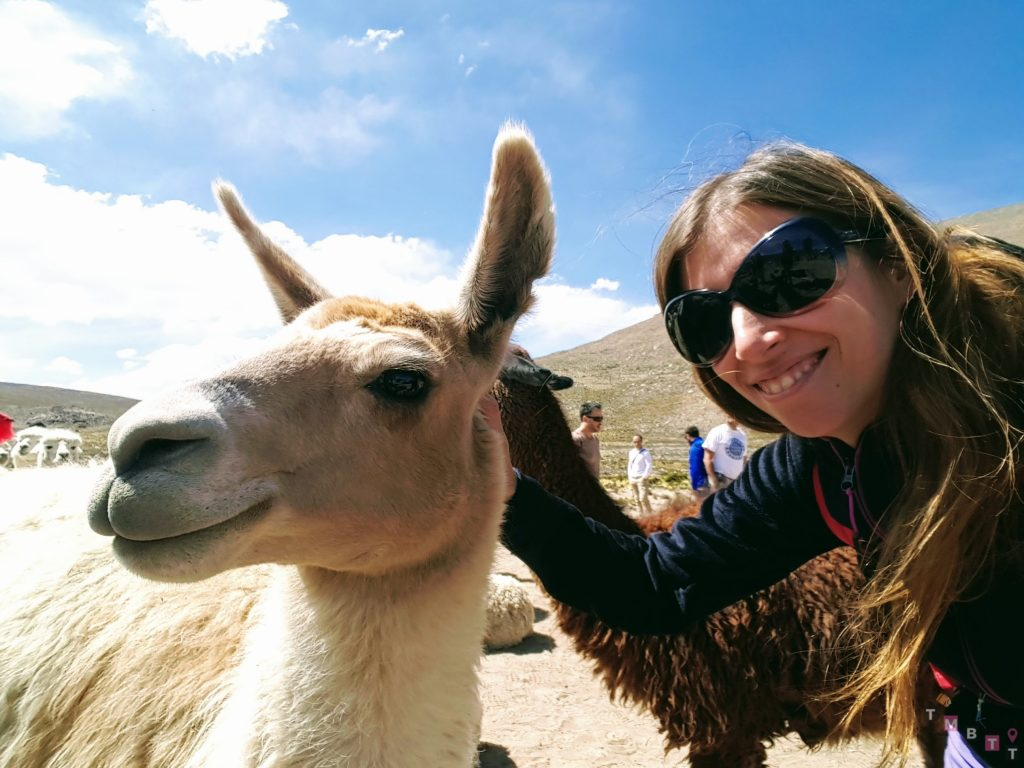 About me - selfie with Lama