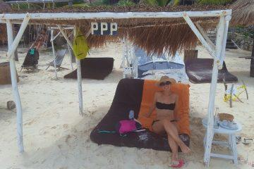 manu al papaya playa project