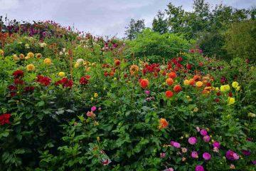 giardini castel trauttmansdorff