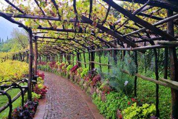 vigne giardini castel trauttmansdorff